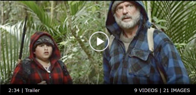 Hunt for the Wilderpeople trailer screenshot